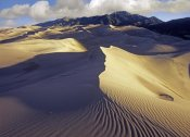 Tim Fitzharris - Rippled sand dunes with Sangre de Cristo Mountains in the background, Great Sand Dunes National Park and Preserve, Colorado