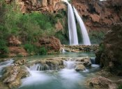 Tim Fitzharris - Havasu Creek, lined with Cottonwood trees, Havasu Falls, Grand Canyon, Arizona