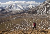 Colin Monteath - Hiker descends hill of Tussock Grass above Lake Heron Station, Canterbury, New Zealand