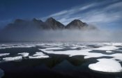 Flip Nicklin - Ice floes in pond inlet, northeast Baffin Island, Canada