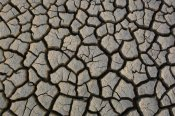 Pete Oxford - Cracked mud on the salt flats of the Little Rann of Kutch, Gujarat, India