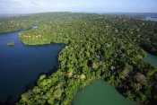Christian Ziegler - Aerial view of the Canal Zone, Barro Colorado Island, Panama
