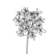 Jan Weiss - Black and White Happy Flower 1