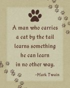 BG.Studio - Mark Twain: Cat by the Tail