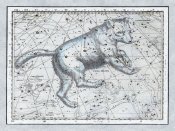 Alexander Jamieson - Maps of the Heavens: Ursa Major - The Great Bear