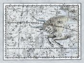 Alexander Jamieson - Maps of the Heavens: Taurus the Bull