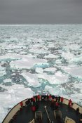 Tui De Roy - Passengers on bow of Russian icebreaker, Ross Sea, Antarctica