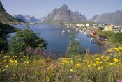 Tui De Roy - Traditional fishing village, summer, Lofoten Island, Norway