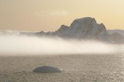 Tui De Roy - Fog bank hugging foot of icy mountains, Gerlache Strait, Antarctica