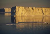 Tui De Roy - Tabular icebergs in late summer sun, Prince Olav Coast, east Antarctica