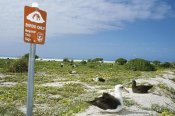 Tui De Roy - Sign posted 'Birds Only Beyond This Point', Midway Atoll, Hawaii