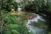 Tui De Roy - Mato Grosso, limestone springs and waterfalls, Serra de Bodoquena, Brazil