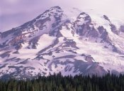 Tim Fitzharris - Mt Rainier, Mt Rainier National Park, Washington