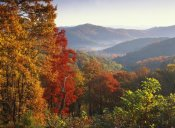 Tim Fitzharris - Autumn foliage on Blue Ridge Range near Jumping Off Rock, North Carolina