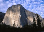 Tim Fitzharris - El Capitan rising over the forest, Yosemite National Park, California