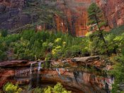 Tim Fitzharris - Cascades and desert varnish at Emerald Pools, Zion National Park, Utah