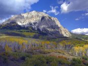 Tim Fitzharris - Fall colors at Gunnison National Forest, Colorado
