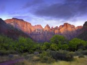 Tim Fitzharris - Towers of the Virgin, Zion National Park, Utah