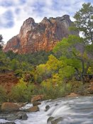 Tim Fitzharris - Court of the Patriarchs, Zion National Park Utah