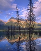 Tim Fitzharris - Chancellor Peak reflected in lake, Yoho National Park, BC, Canada