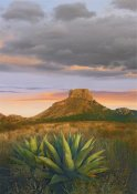 Tim Fitzharris - Lechuguilla agave and  Casa Grande, Big Bend National Park, Texas