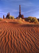 Tim Fitzharris - Totem pole and Yei Bi Chei with sand dunes, Monument Valley,  Arizona