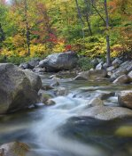 Tim Fitzharris - Swift River in fall, White Mountains National Forest, New Hampshire