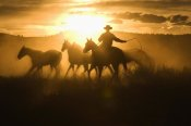 Konrad Wothe - Cowboy with lasso herding Horses at sunset, Oregon