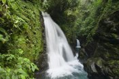 Konrad Wothe - La Paz Waterfalls in rainforest, Costa Rica