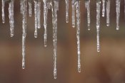 Gerry Ellis - Single strand of icicles melting, North America