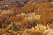 Gerry Ellis - Hoodoos formations from Sunrise Point, Bryce Canyon National Park, Utah