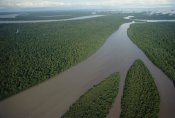 Gerry Ellis - Kikori River and runs through rainforest, Kikori Delta, Papua New Guinea