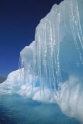 Colin Monteath - Icicles hanging from iceberg, Petermann Island, Antarctic Peninsula, Antarctica