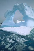 Colin Monteath - Iceberg with arch, Petermann Island, Antarctic Peninsula, Antarctica