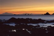 Andy Reisinger - South Island seen from Island Bay at sunset, Wellington, New Zealand