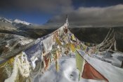 Colin Monteath - Iced up prayer flags, Dzong Ri, Sikkim Himalaya, India