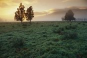 Andy Reisinger - Dawn light over South Island farmland, New Zealand