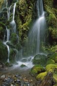 Jim Harding - Waterfall cascading over mossy rocks, Tongariro NP, New Zealand