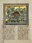 Franco-Flemish 13th Century - A Hedgehog