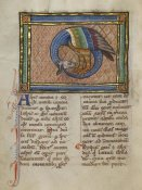 Franco-Flemish 13th Century - A Dragon-like Snake
