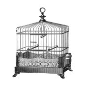 Catalog Illustration - Etchings: Birdcage - Filigree base.