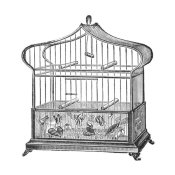 Catalog Illustration - Etchings: Birdcage - Onion-peak top, floral base.