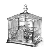 Catalog Illustration - Etchings: Birdcage - Onion peak top, floral base.