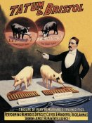 Advertisement - Pigs and Pork: Tatum and Bristol's Troupe of Trained Pigs