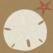 BG.Studio - Summer Fun: Sand Dollar