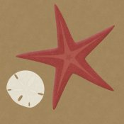 BG.Studio - Summer Fun: Starfish