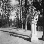Eugène Atget - France, 1920 - The Park, Versailles