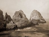 Carleton Watkins - Sugarloaf Islands at Fisherman's Bay, Farallon Islands, San Francisco, California, 1869
