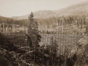 Carleton Watkins - Dam and Lake, Nevada County, California, Near View, about 1871
