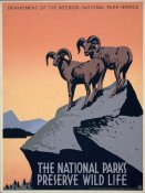 J. Hirt - The National Parks Preserve Wild Life, ca. 1936-1939